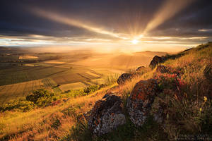 The Greatest Light by MaximeCourty