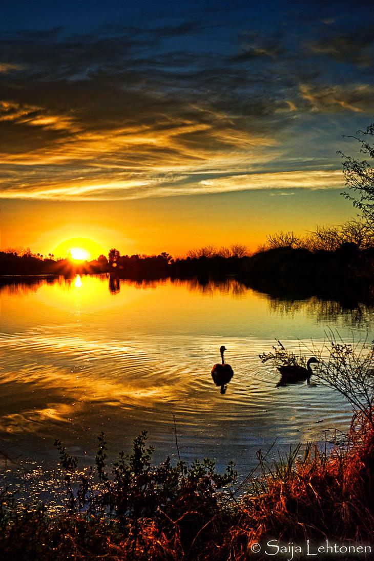 Dreamy Sunset by CeeThruMyEyes
