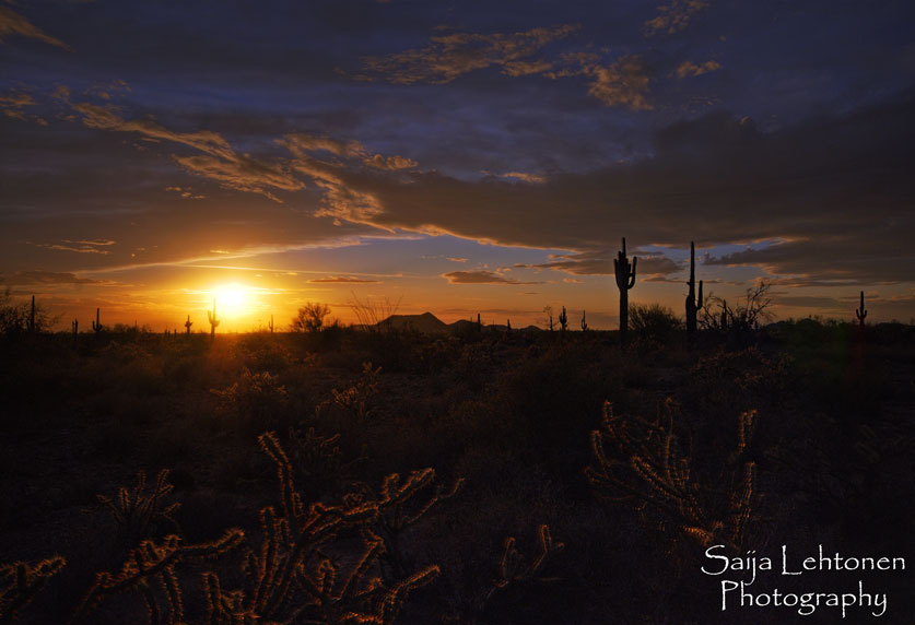 A Southwest Sunset by CeeThruMyEyes