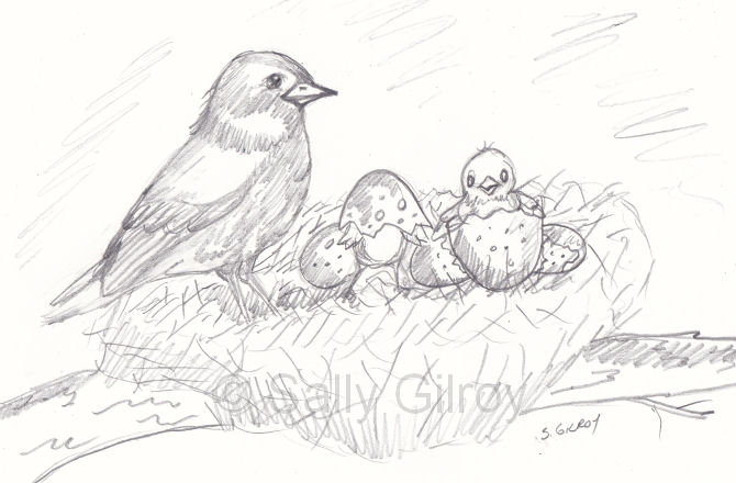 Babes in nest SGG pr by sallygilroy