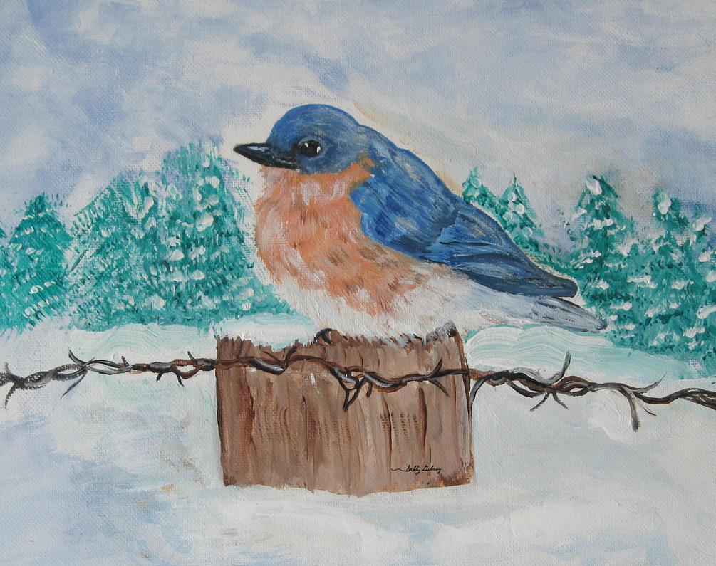 Bluebird winter SGG by sallygilroy