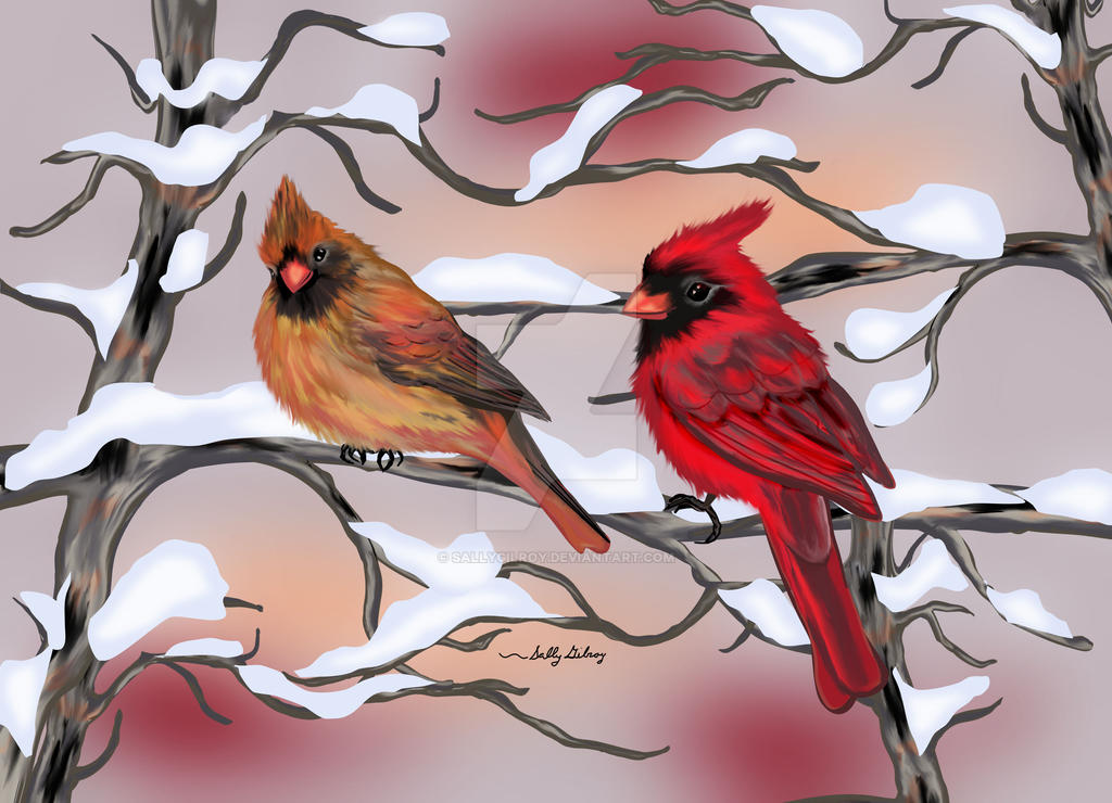 Cardinals SGG by sallygilroy
