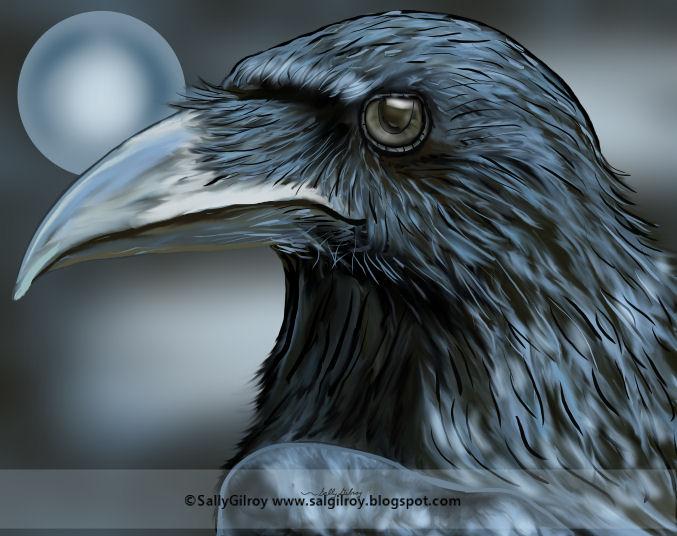 Raven Lights Prev by sallygilroy