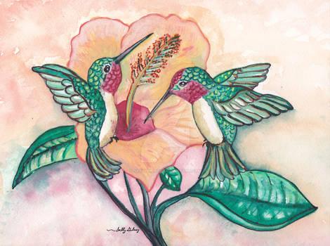 Hummingbird haven SGG