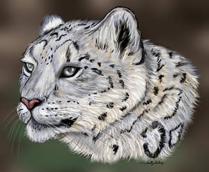 Leopard print SGG