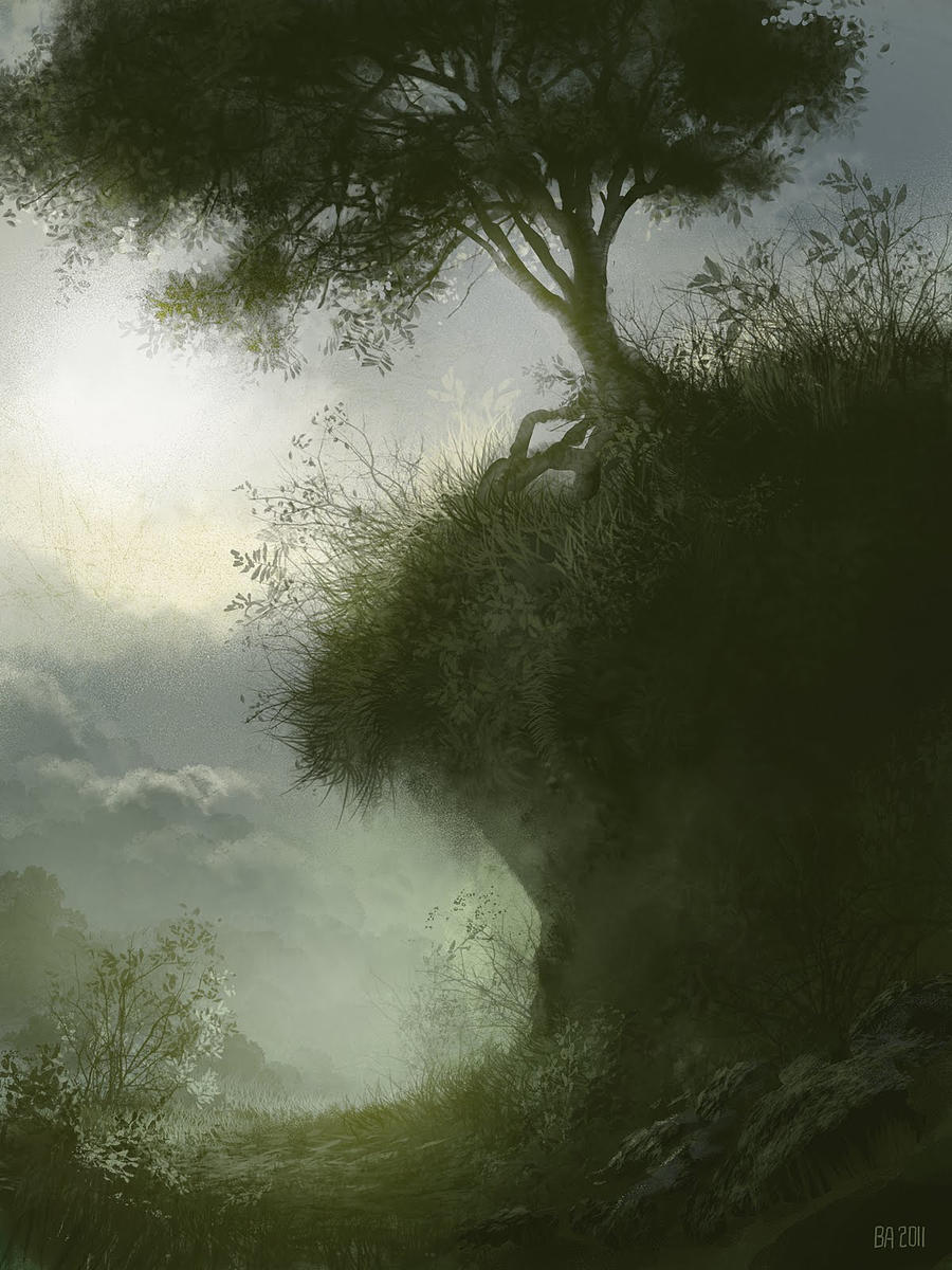 tree_study by Ben-Andrews