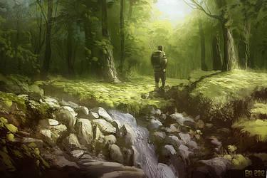 woodland by Ben-Andrews