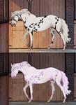 -Auction horse adopt 2 [CLOSED] - by KiyokoKitsu
