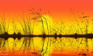 Fall sunset by art-by-Amaranth
