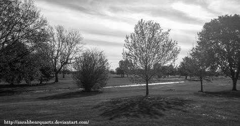 Grayscale Landscape by SarahBearQuartz