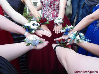 Going to Prom by SarahBearQuartz