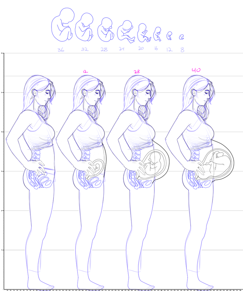 Impreg nation blog deviantart super pregnancy chart project tess single by idlehq d839n09 by zihilism nvjuhfo Image collections