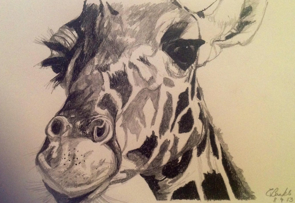 Giraffe by carlyscanvas
