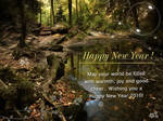 New Year 2010 - 2