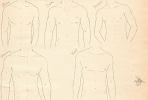 Different Character Anatomy study pt 3 by Pickerupper