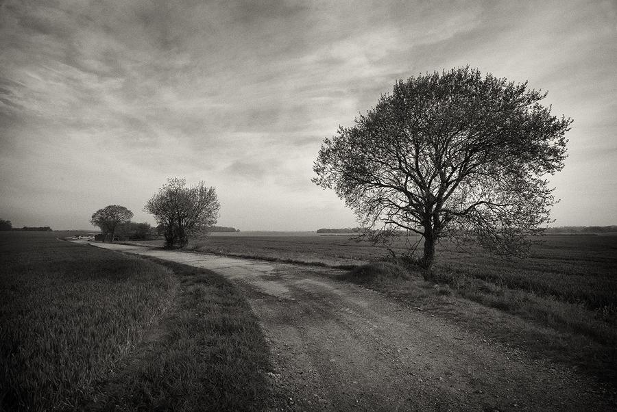 Old Runway by eternumviti