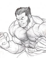 Wolverine rough sketch by NMRosario