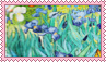 irises by molly-stamps