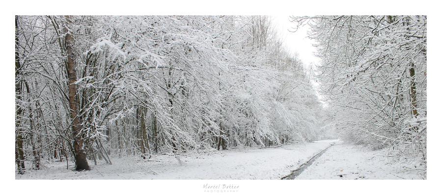 Snowy landscape by MBKKR