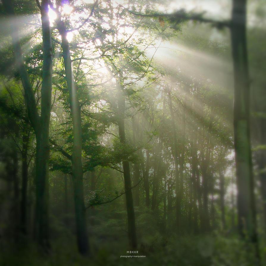 Roggebotzand 2015 zonnestralen by MBKKR