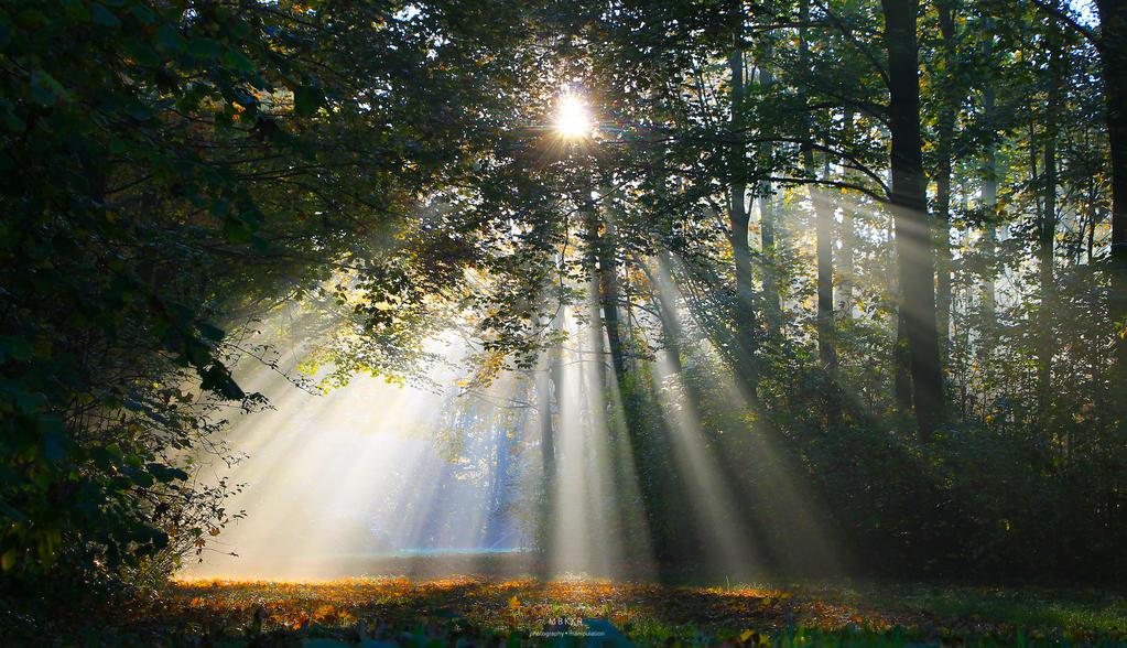 Hello sunshine.... by MBKKR
