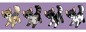 CLOSED } Point Feline Batch #6