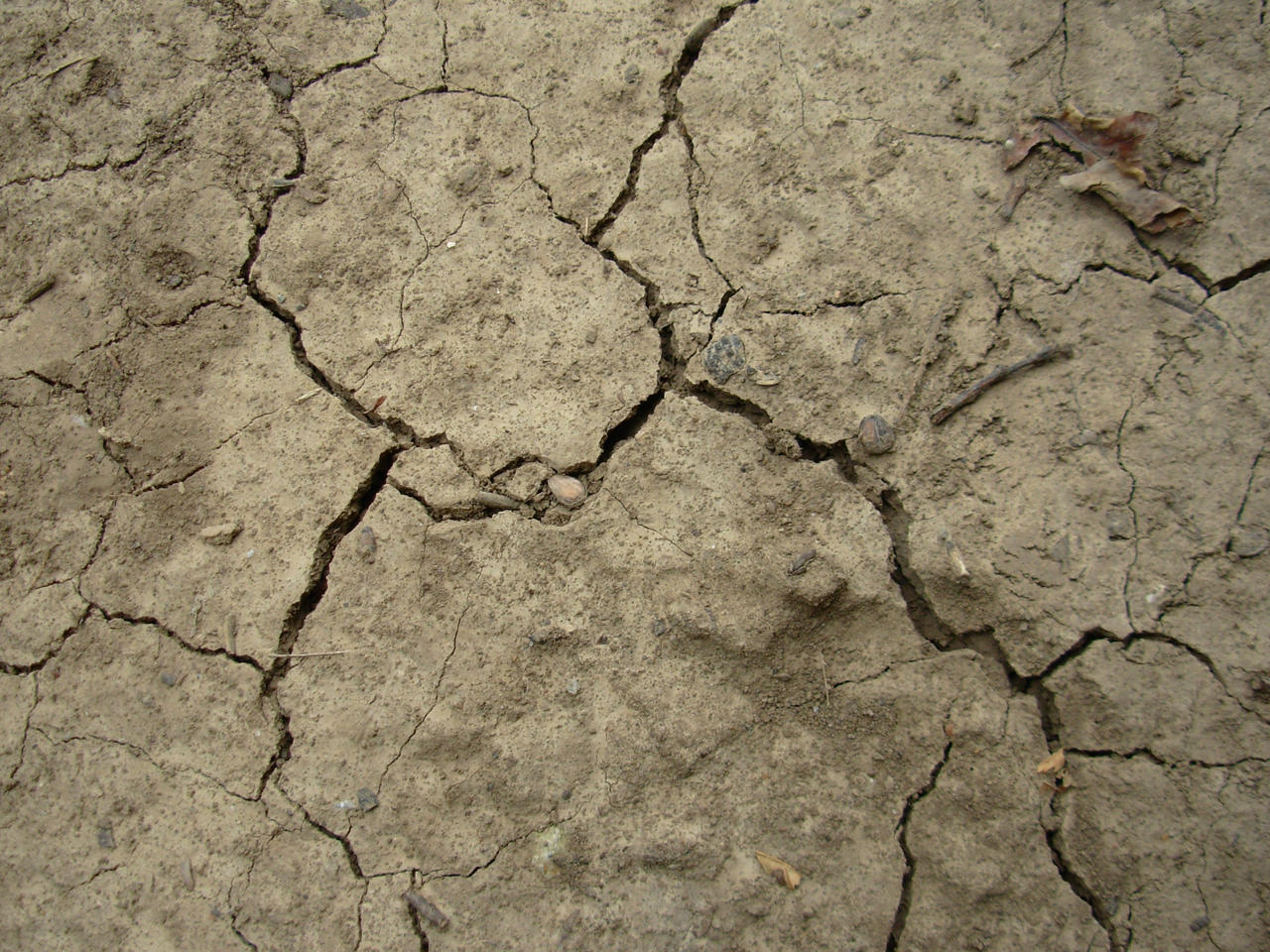 Cracked ground wallpaper the ground beneath her feet premium cracked wallpaper cracked ground stock by vl2r on deviantart hd cracked wallpapers and photos voltagebd Images