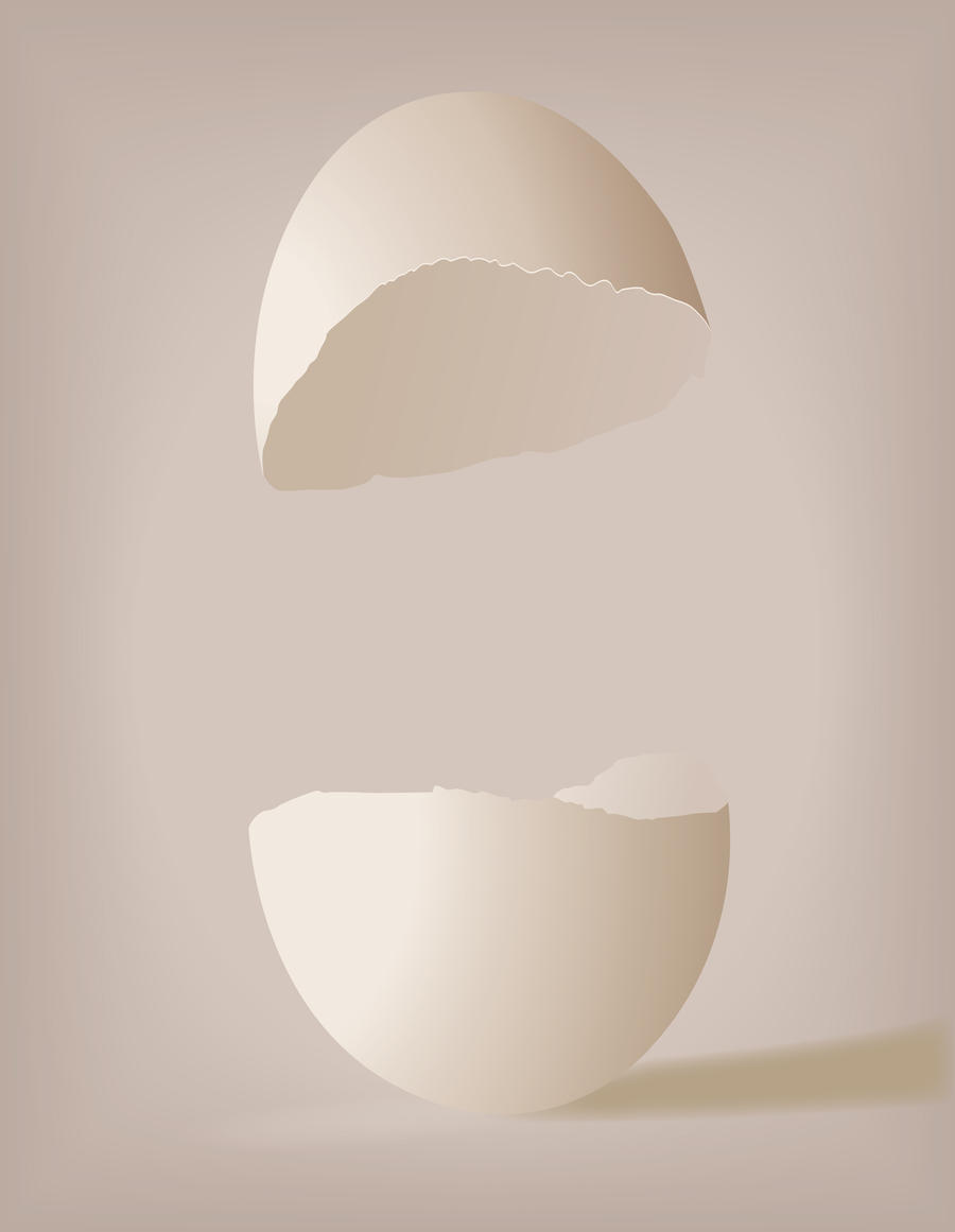 egg shell Egg hell (ĕg′shĕl′) n 1 the thin, often brittle exterior covering of the egg of a bird or reptile 2 a pale yellow to yellowish white 3 a kind of paint that dries.