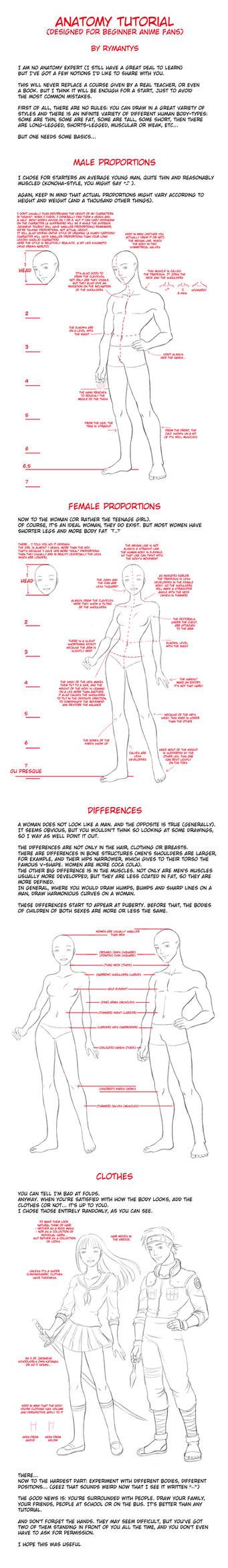 Anatomy tutorial for beginners by RyMantys