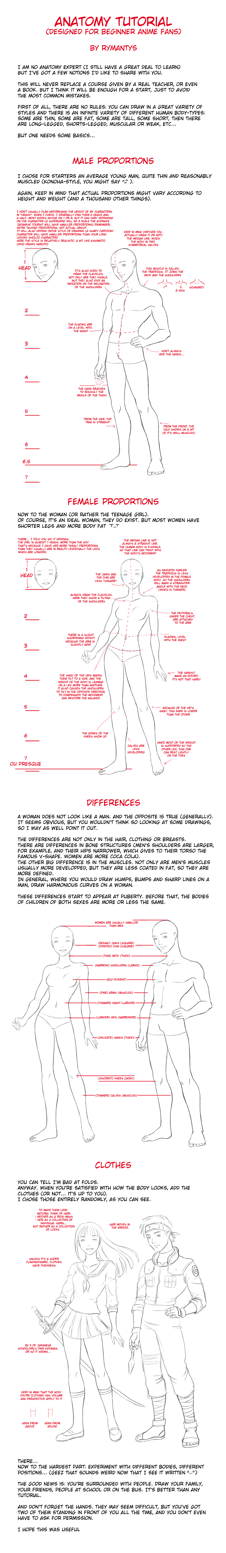 Anatomy tutorial for beginners by RyMantys on DeviantArt