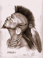 Ohanzee- centaur warrior- by aryundomiel