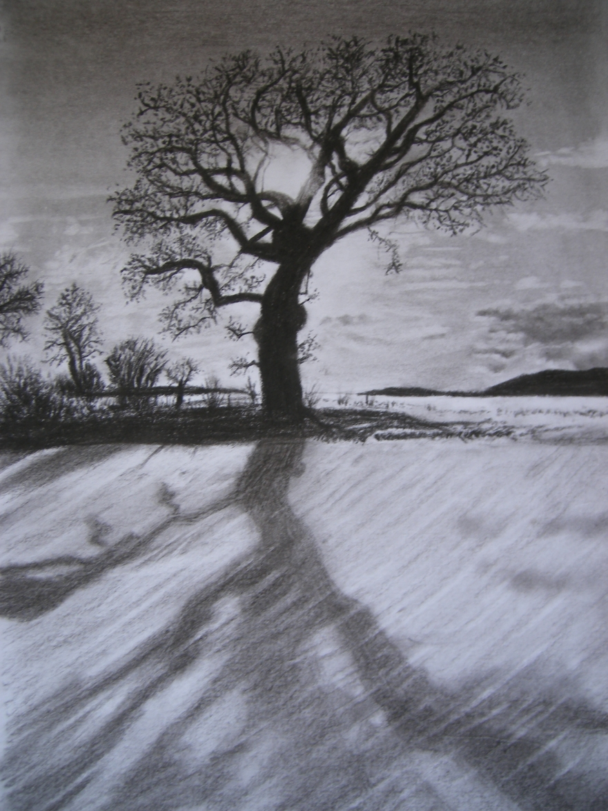 Charcoal Tree and Shade by SangrealDeJoy on DeviantArt