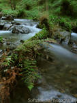 Flowing River 6