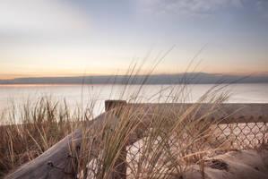 Seaford Beach 2
