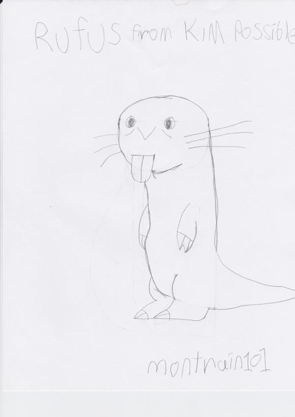 My drawing of Rufus from Kim possible by montrain101