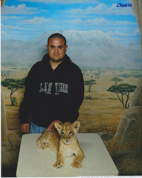 Las Vegas MGM grand lion cub by montrain101