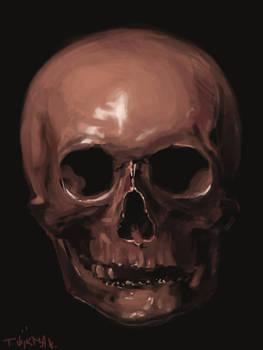 A quick study of a skull