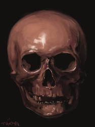 A quick study of a skull by ink532