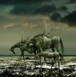 Wild Horses v.2 by aspius
