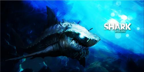 Shadow Shark - Banner by Baderas