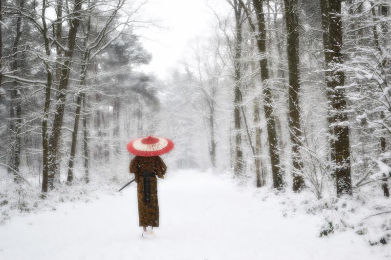 """Résultat de recherche d'images pour """"samurai snow"""""""