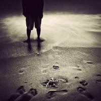 step I by arayo