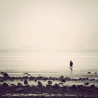 Finder by arayo