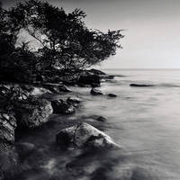 sea mind by arayo