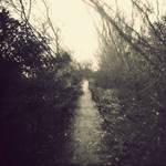 soulway III by arayo