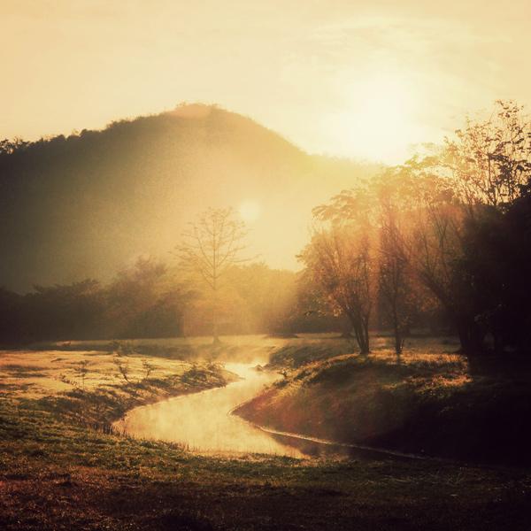 Shine 2012 by arayo