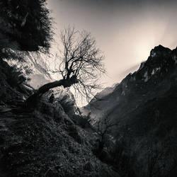 Himalaya Ways