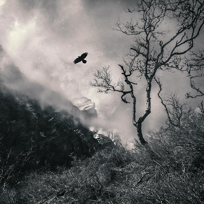 Fly my home Himalaya