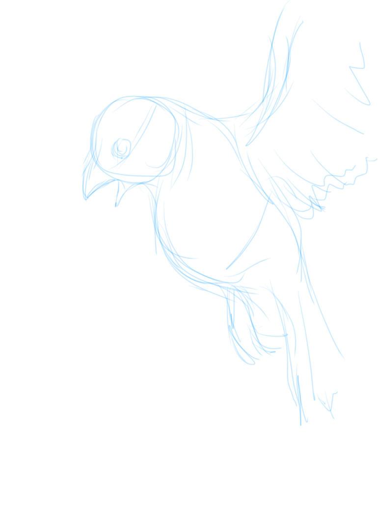 FLYING BIRDS by XtremiT