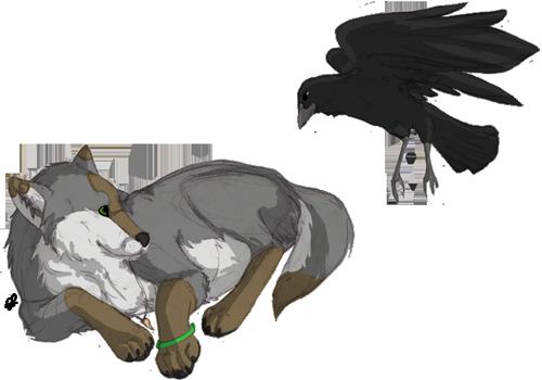 Night--Raven's Profile Picture